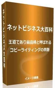 netbusinessencyclopedia03