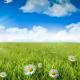 北風と太陽の教訓とあらすじ【人を動かす文章とは?】